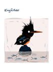 """Kingfisher"""